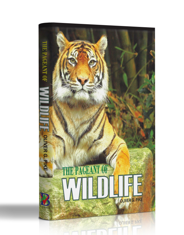 THE PAGEANT OF WILDLIFE